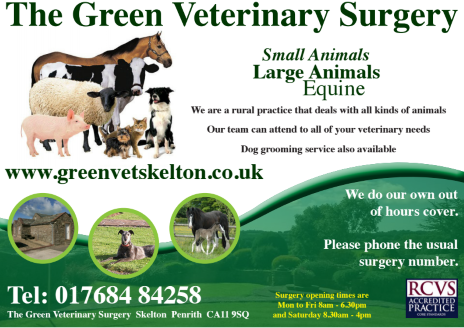 Green Vets Skelton logo
